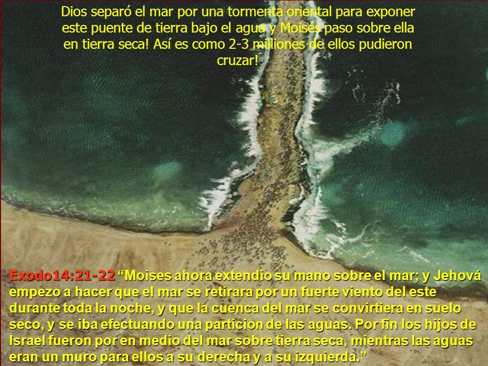 Dios separó el mar por una tormenta oriental para exponer este puente de tierra bajo el agua y Moisés paso sobre ella en tierra seca! Así es como 2-3 milliones de ellos pudieron cruzar!