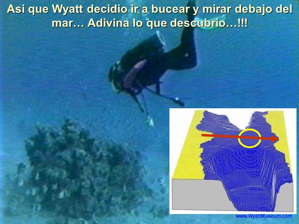 Asi que Wyatt decidio ir a bucear y mirar debajo del mar… Adivina lo que descubrio…!!!