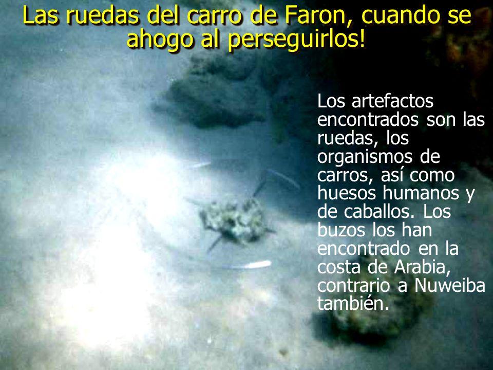 Las ruedas del carro de Faron, cuando se ahogo al perseguirlos!