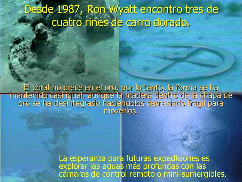 Desde 1987, Ron Wyatt encontro tres de cuatro rines de carro dorado.