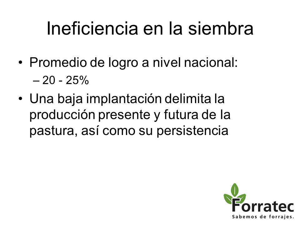 Ineficiencia en la siembra