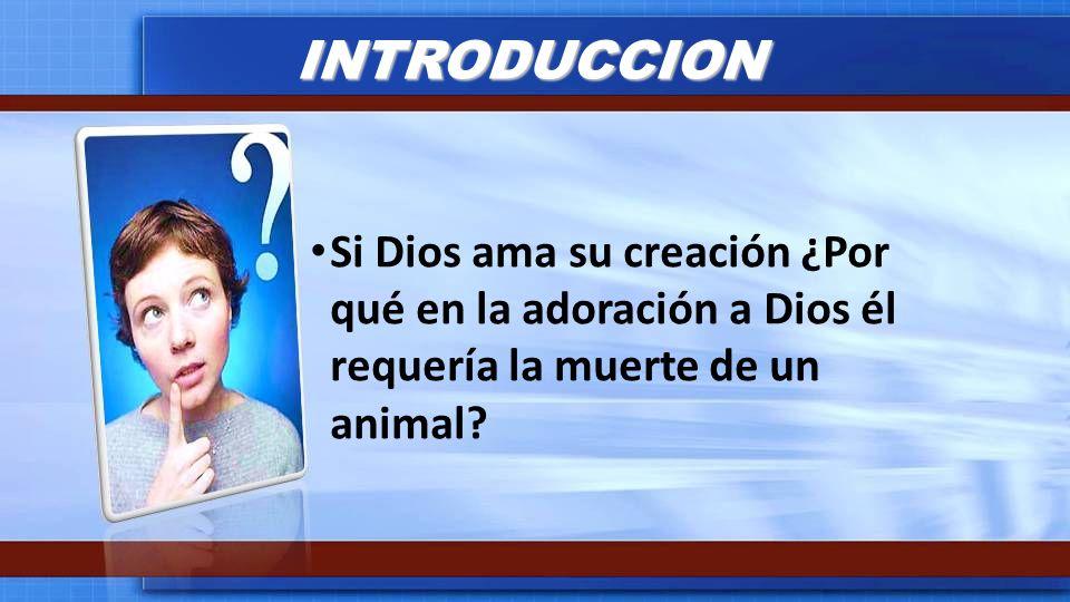 INTRODUCCION Si Dios ama su creación ¿Por qué en la adoración a Dios él requería la muerte de un animal