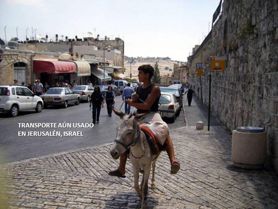TRANSPORTE AÚN USADO EN JERUSALÉN, ISRAEL
