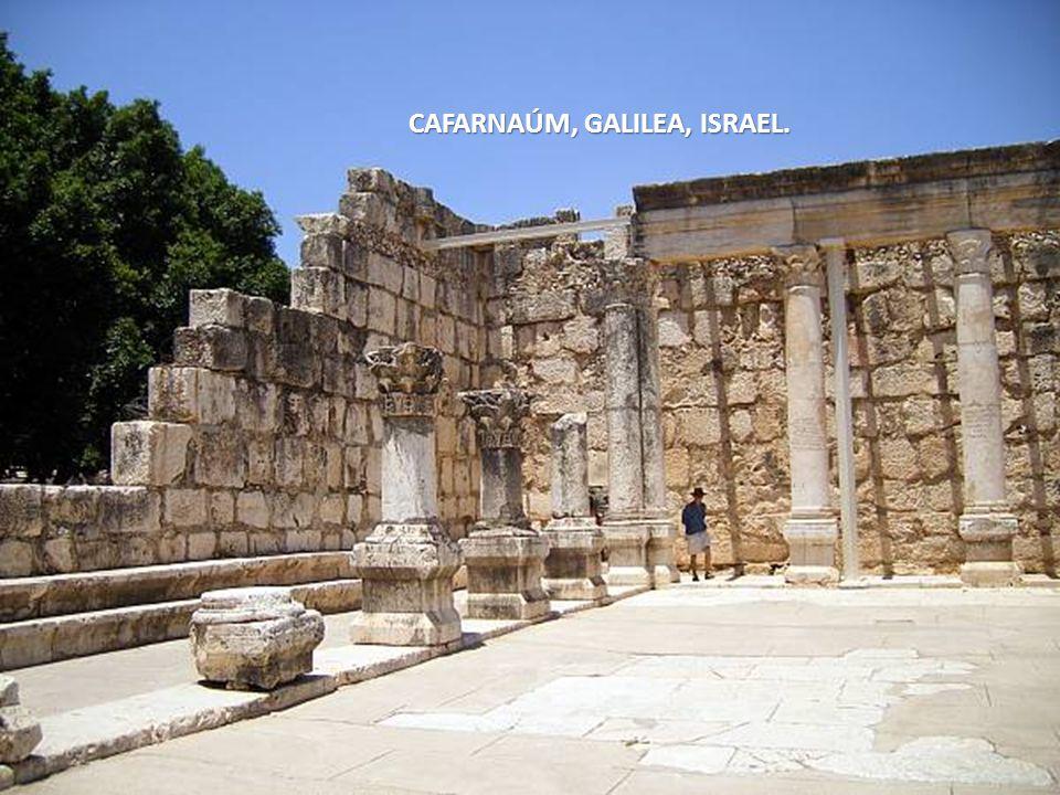 CAFARNAÚM, GALILEA, ISRAEL.