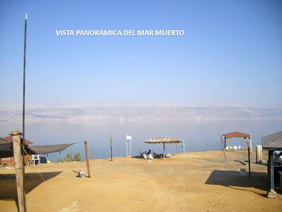 VISTA PANORÁMICA DEL MAR MUERTO
