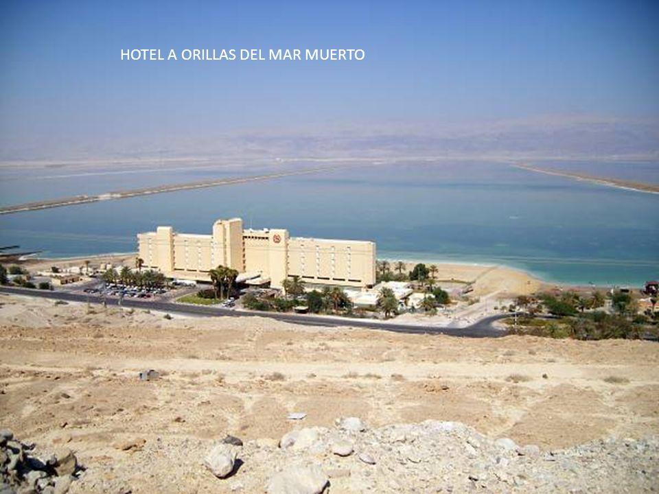 HOTEL A ORILLAS DEL MAR MUERTO
