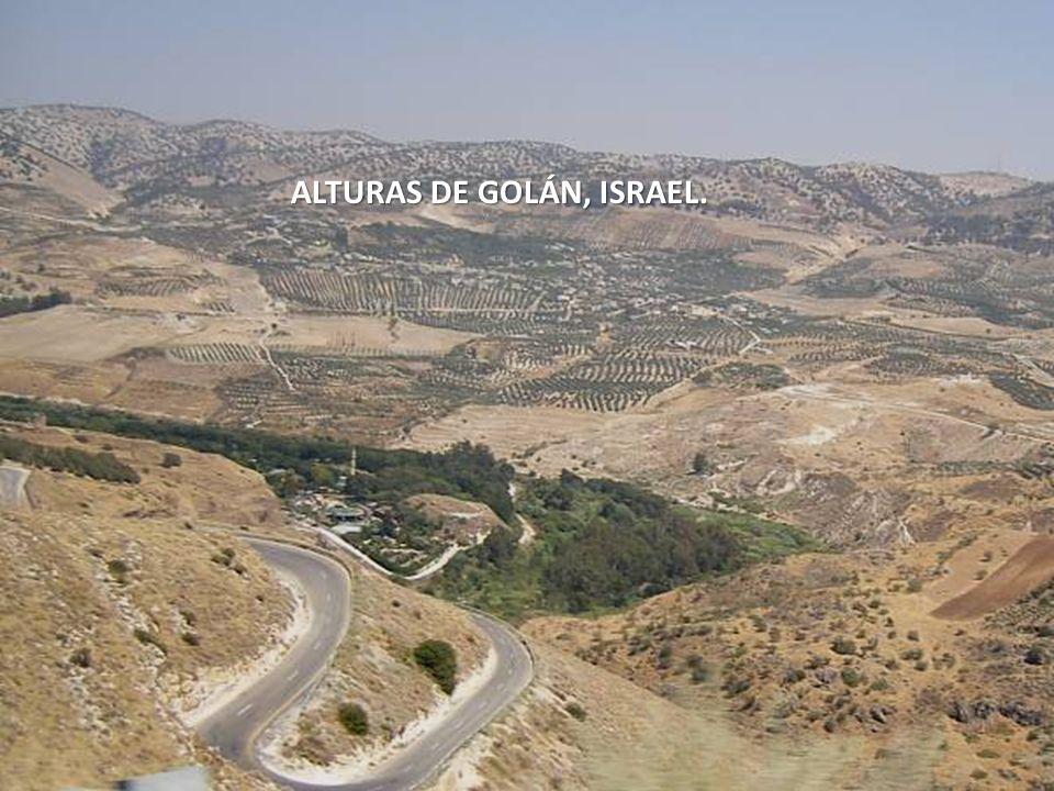 ALTURAS DE GOLÁN, ISRAEL.