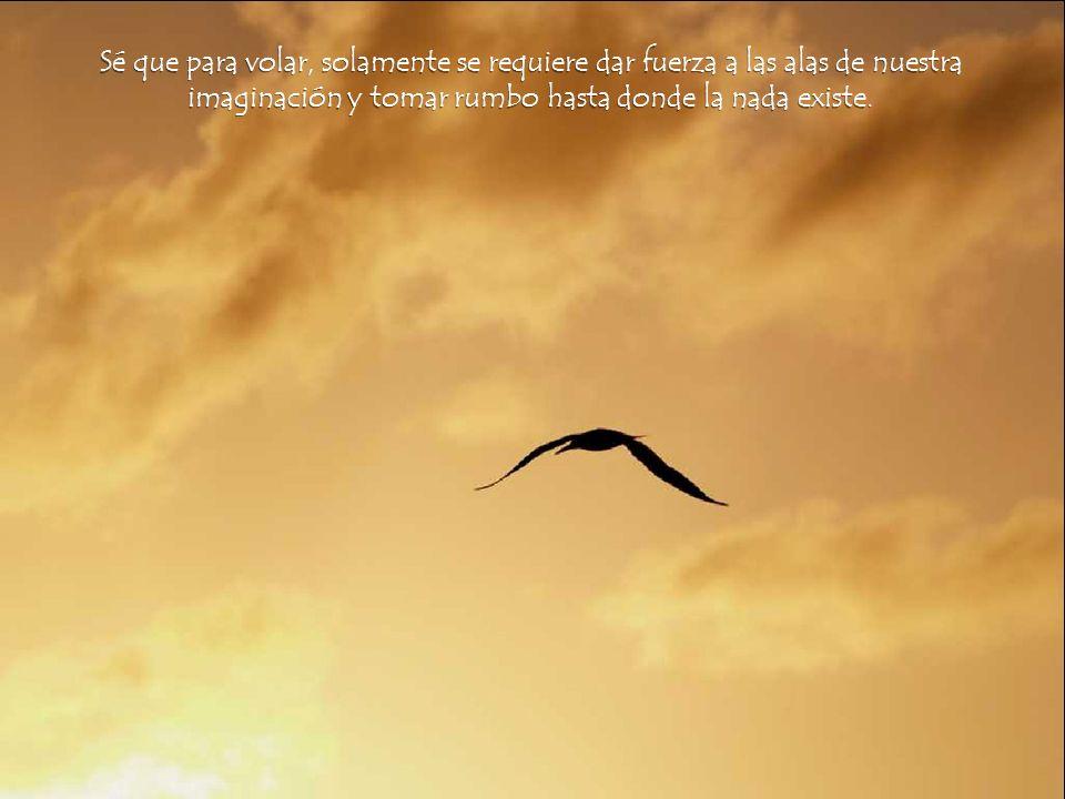 Sé que para volar, solamente se requiere dar fuerza a las alas de nuestra imaginación y tomar rumbo hasta donde la nada existe.