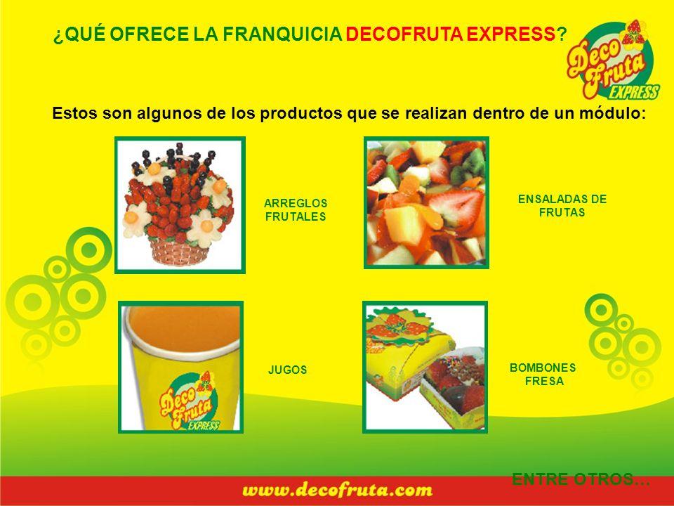 ¿QUÉ OFRECE LA FRANQUICIA DECOFRUTA EXPRESS