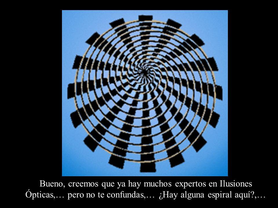 Bueno, creemos que ya hay muchos expertos en Ilusiones Ópticas,… pero no te confundas,… ¿Hay alguna espiral aquí ,…