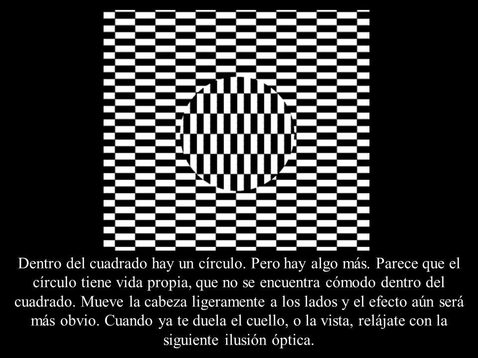 Dentro del cuadrado hay un círculo. Pero hay algo más