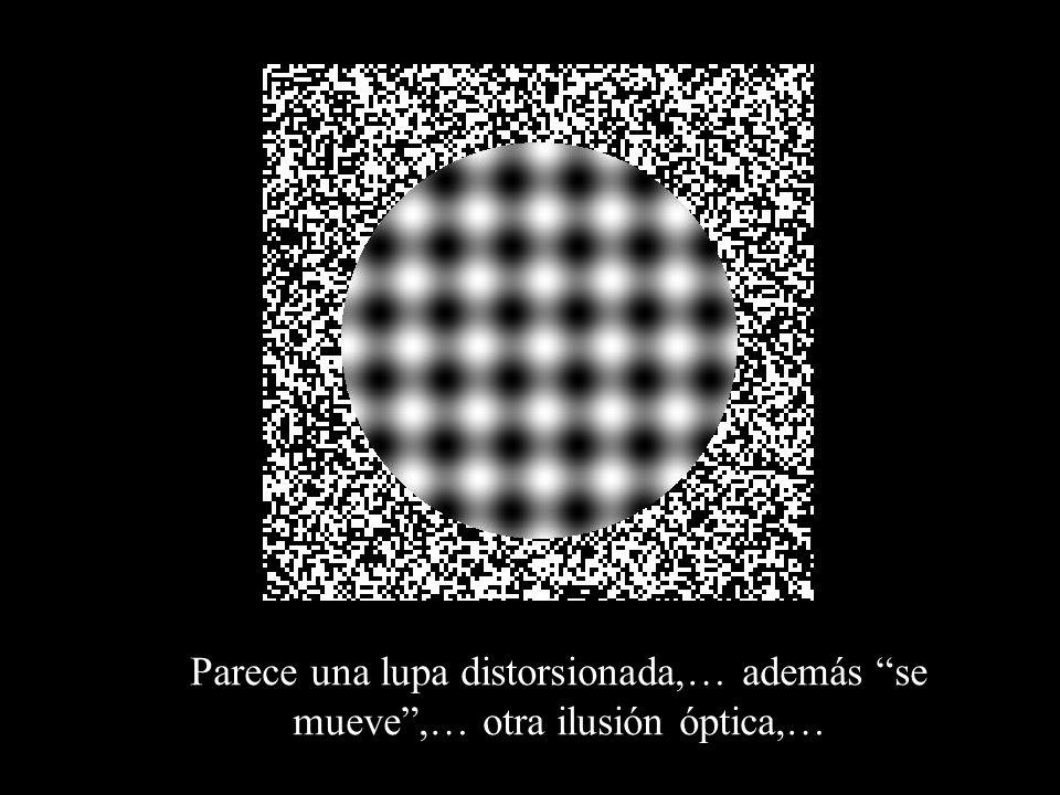 Parece una lupa distorsionada,… además se mueve ,… otra ilusión óptica,…