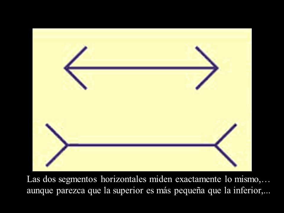 Las dos segmentos horizontales miden exactamente lo mismo,… aunque parezca que la superior es más pequeña que la inferior,...