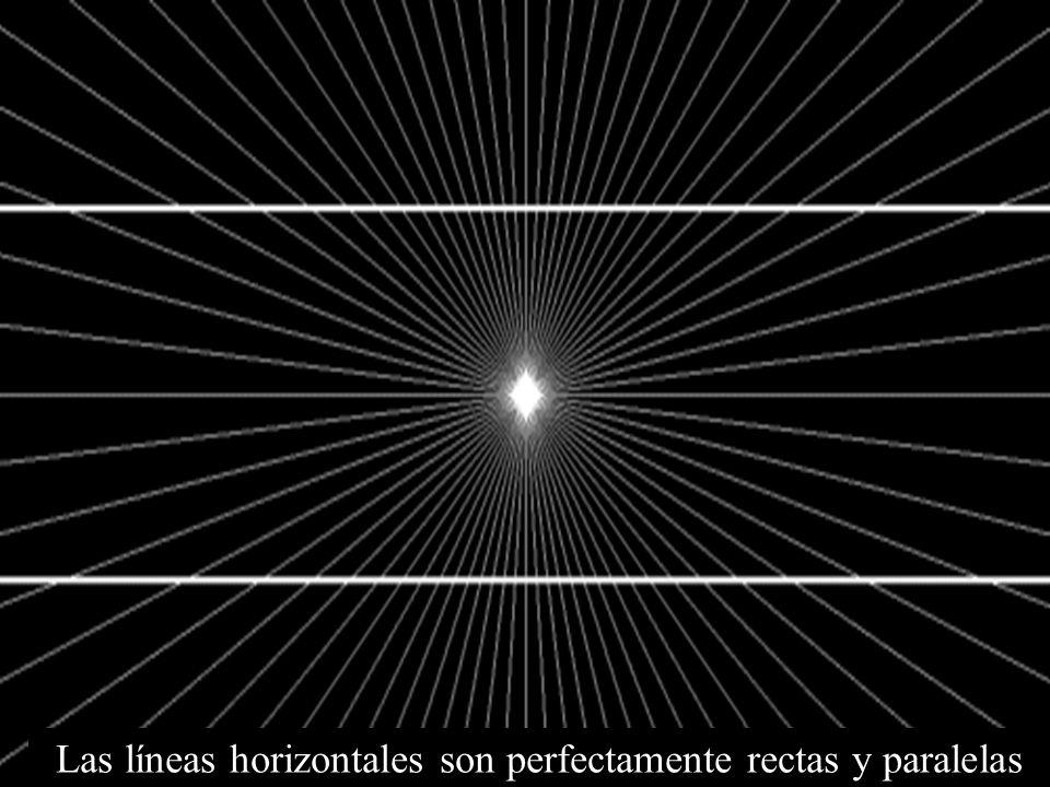 Las líneas horizontales son perfectamente rectas y paralelas