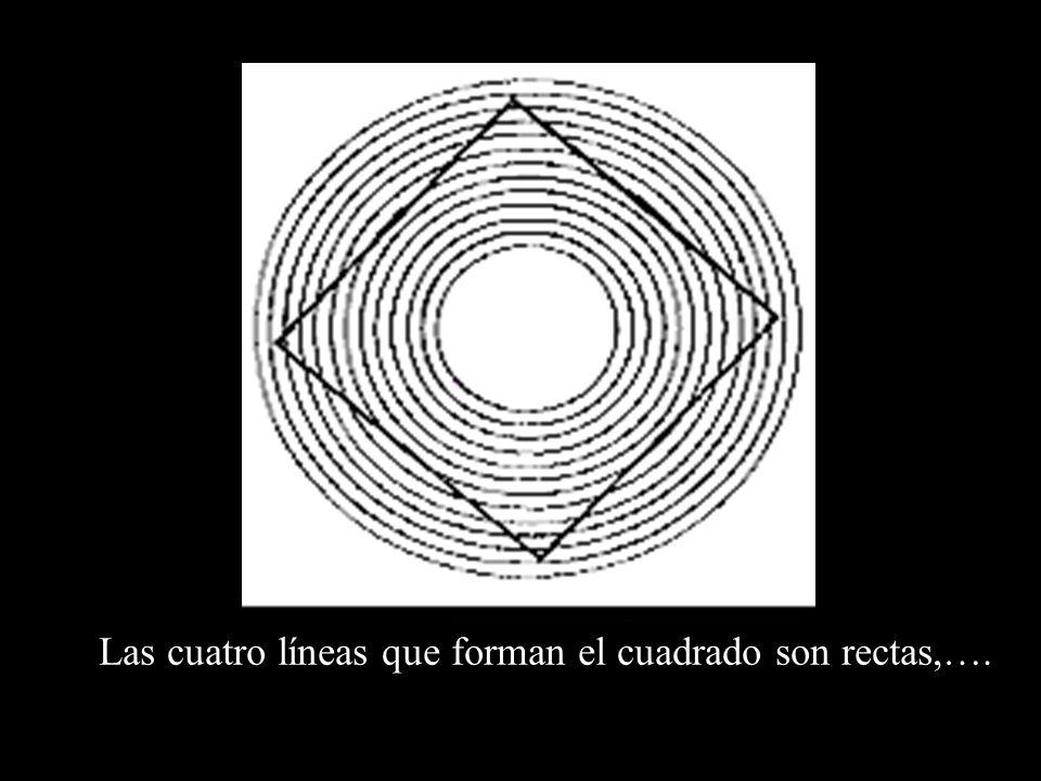 Las cuatro líneas que forman el cuadrado son rectas,….