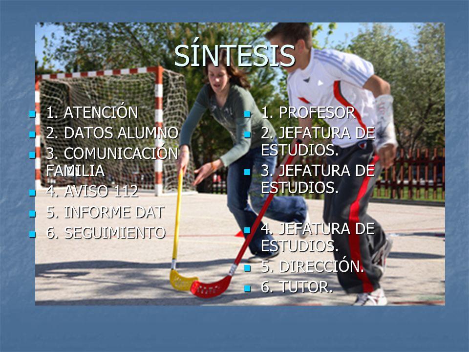 SÍNTESIS 1. ATENCIÓN 2. DATOS ALUMNO 3. COMUNICACIÓN FAMILIA