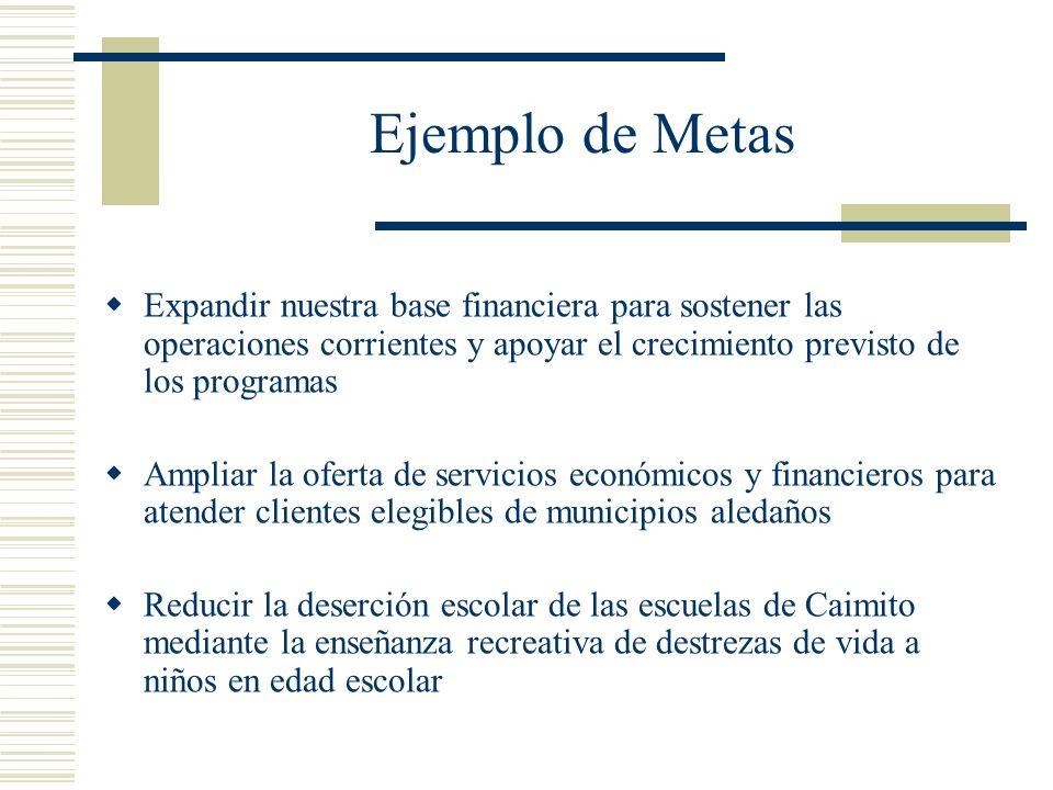 Ejemplo de Metas Expandir nuestra base financiera para sostener las operaciones corrientes y apoyar el crecimiento previsto de los programas.