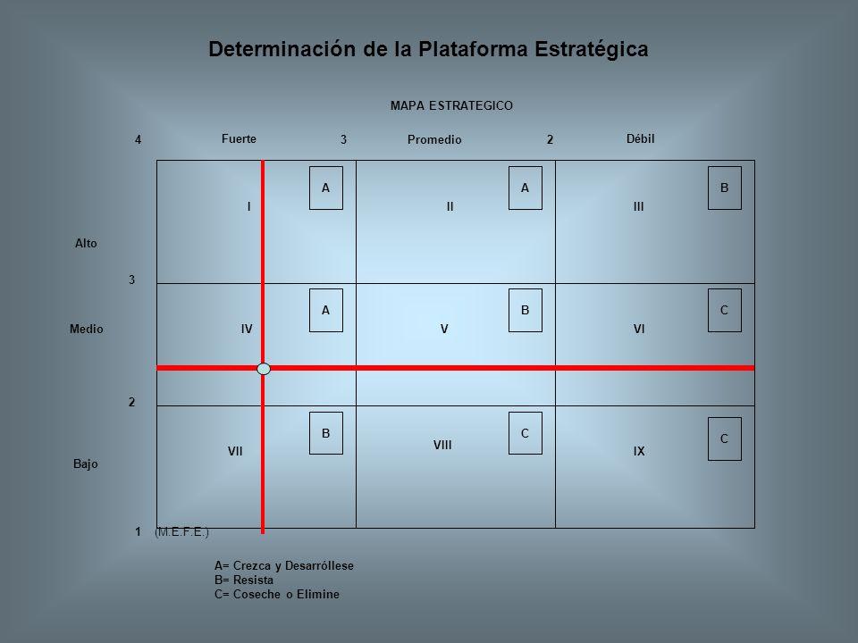 Determinación de la Plataforma Estratégica