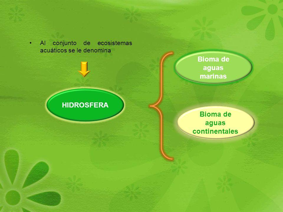 Bioma de aguas continentales