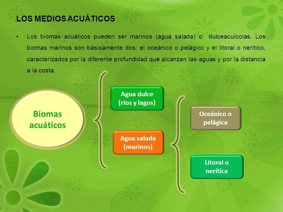 Biomas acuáticos LOS MEDIOS ACUÁTICOS Agua dulce (ríos y lagos)