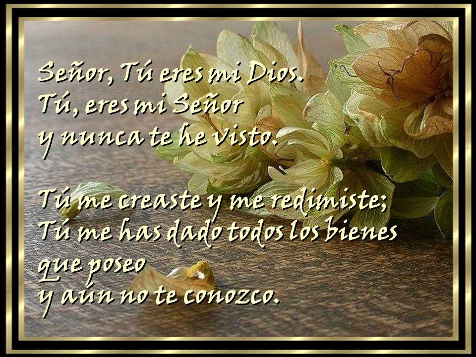 Señor, Tú eres mi Dios. Tú, eres mi Señor. y nunca te he visto. Tú me creaste y me redimiste; Tú me has dado todos los bienes que poseo.