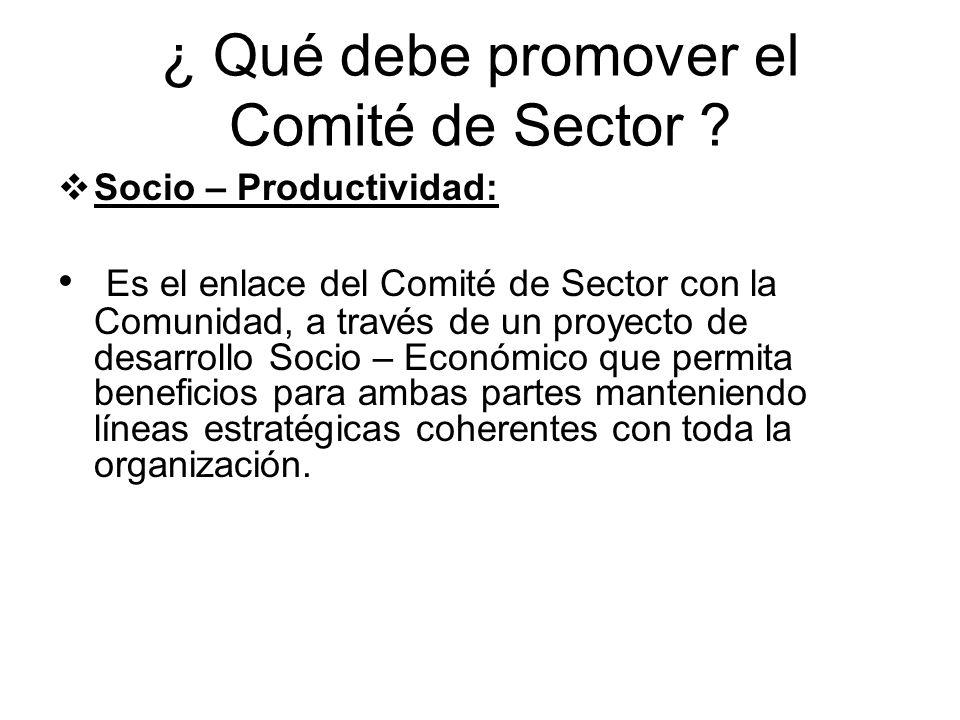 ¿ Qué debe promover el Comité de Sector