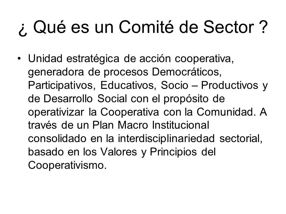 ¿ Qué es un Comité de Sector