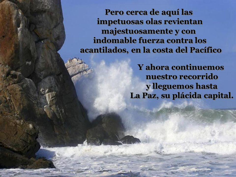 impetuosas olas revientan majestuosamente y con
