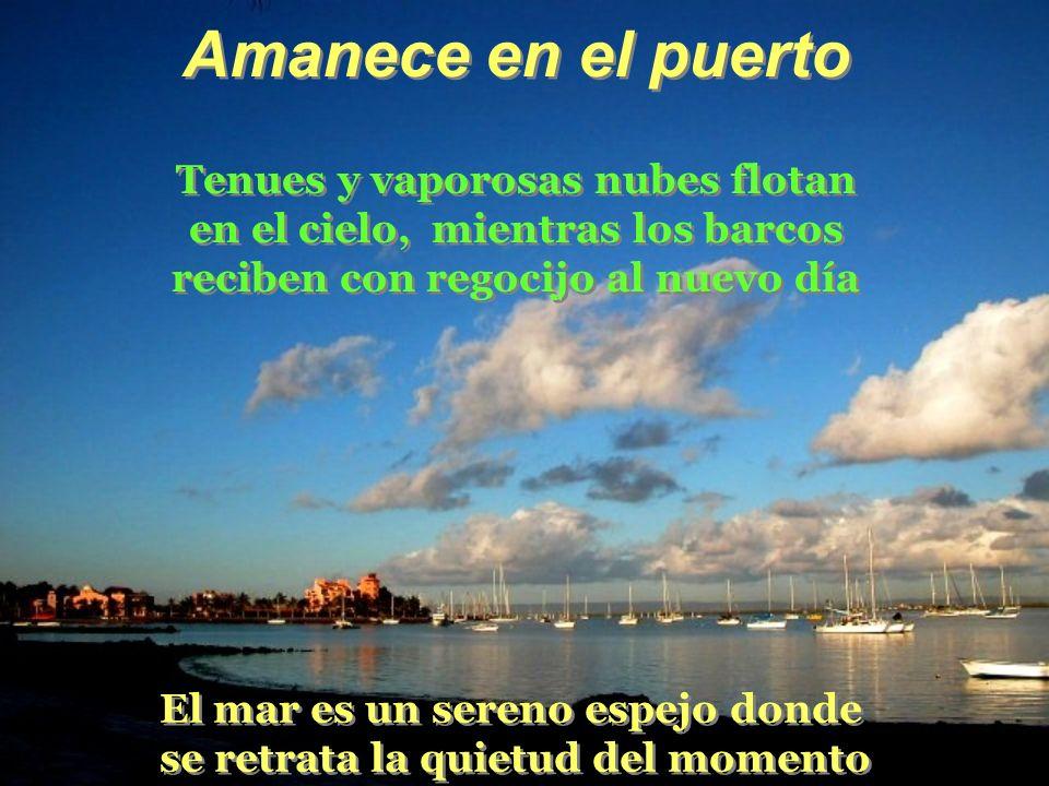 Amanece en el puerto Tenues y vaporosas nubes flotan