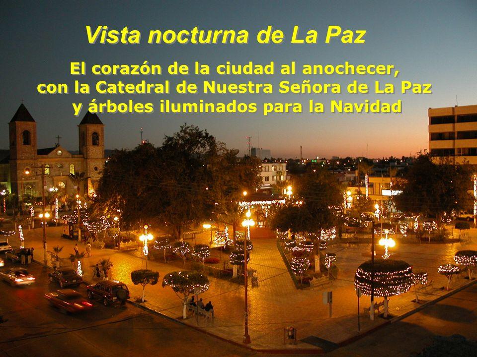 Vista nocturna de La Paz