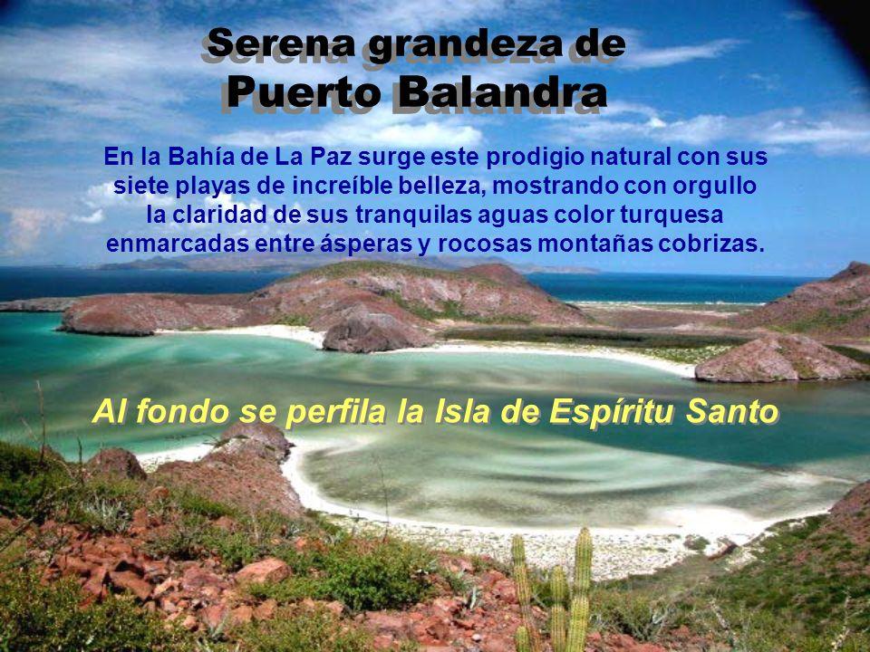 Serena grandeza de Puerto Balandra
