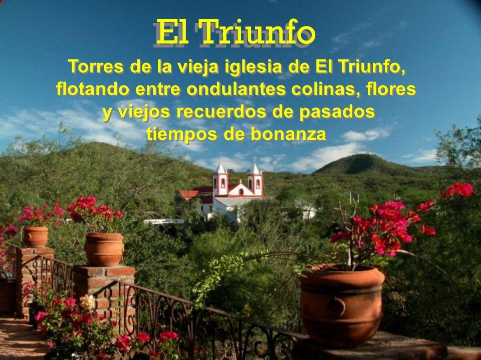 El Triunfo Torres de la vieja iglesia de El Triunfo,