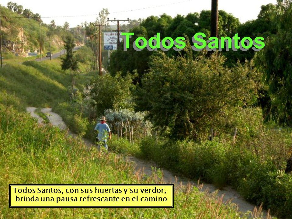 Todos Santos Todos Santos, con sus huertas y su verdor,