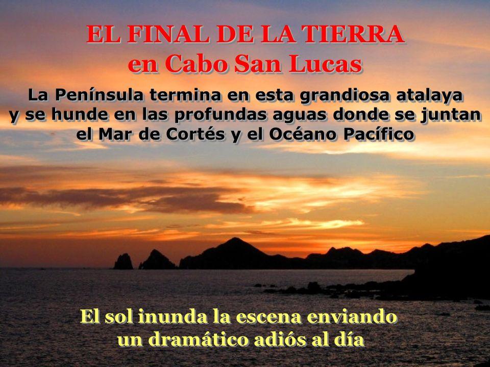 EL FINAL DE LA TIERRA en Cabo San Lucas