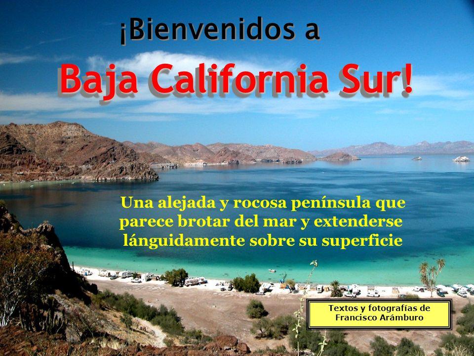 Baja California Sur! ¡Bienvenidos a Una alejada y rocosa península que