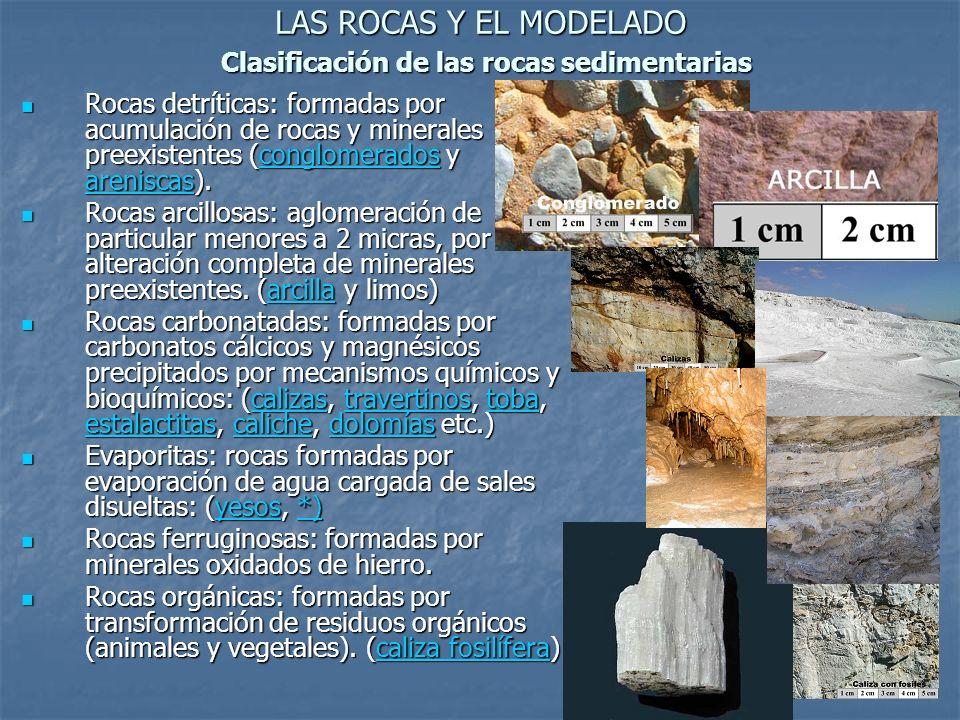 LAS ROCAS Y EL MODELADO Clasificación de las rocas sedimentarias