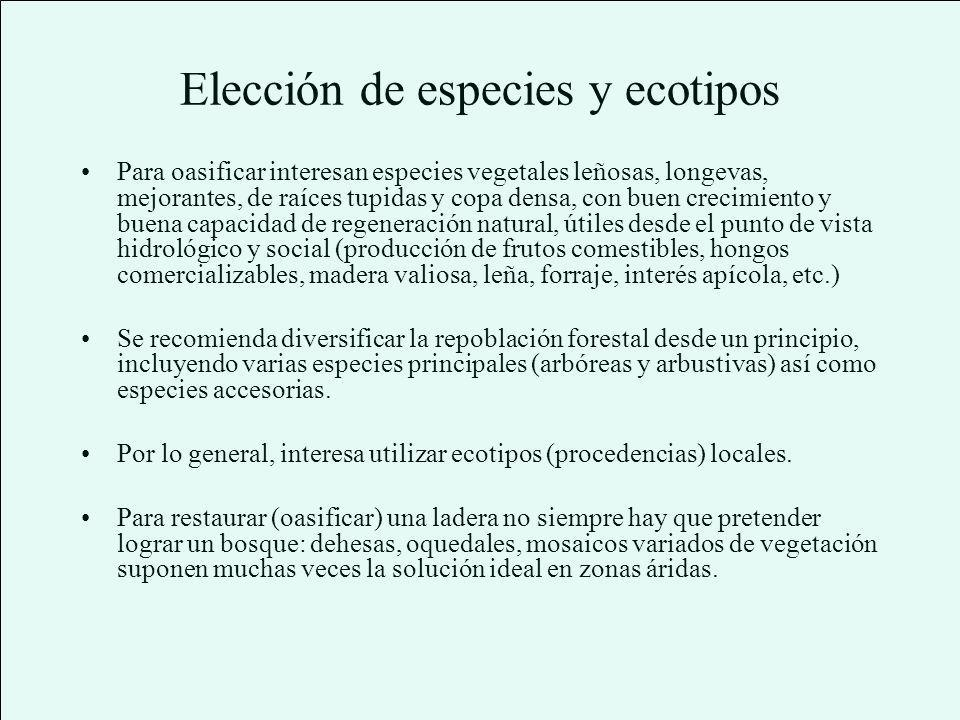 Elección de especies y ecotipos
