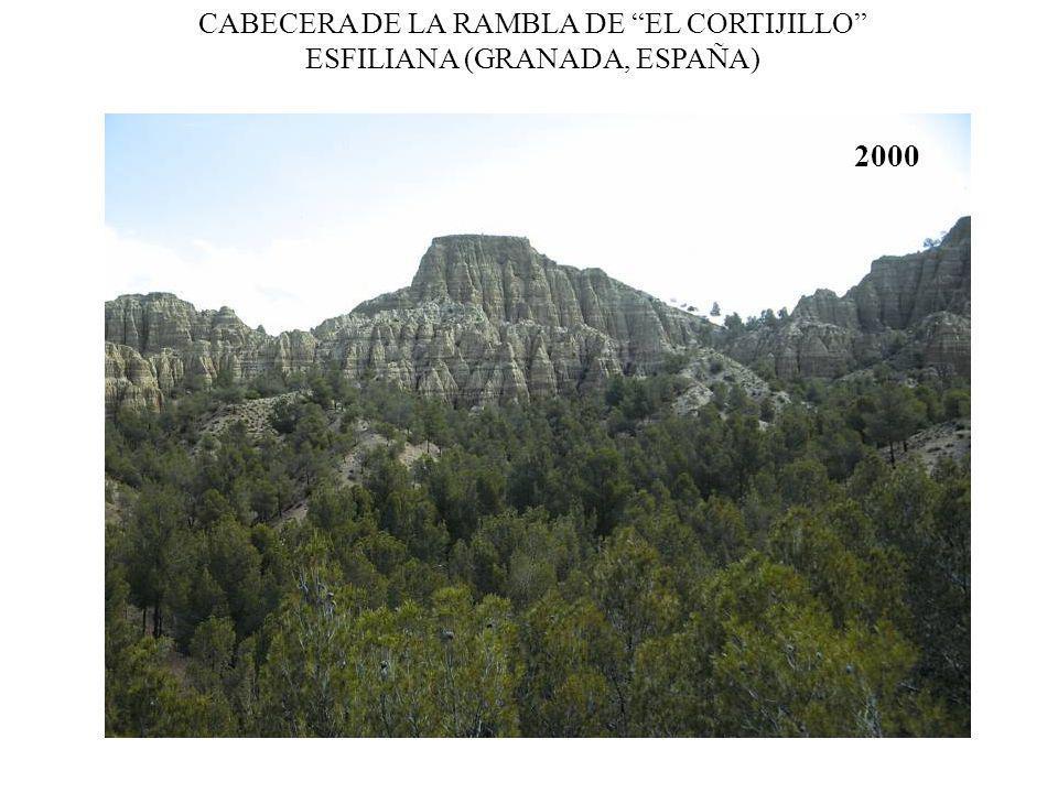 CABECERA DE LA RAMBLA DE EL CORTIJILLO ESFILIANA (GRANADA, ESPAÑA)