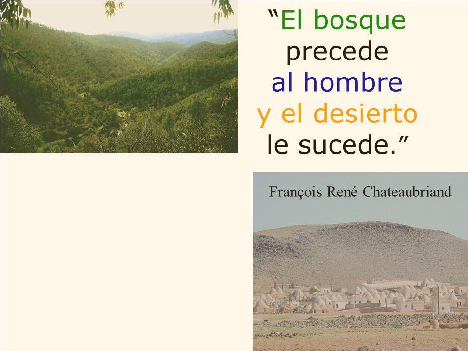 El bosque precede al hombre y el desierto le sucede.