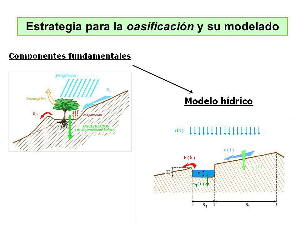 Estrategia para la oasificación y su modelado