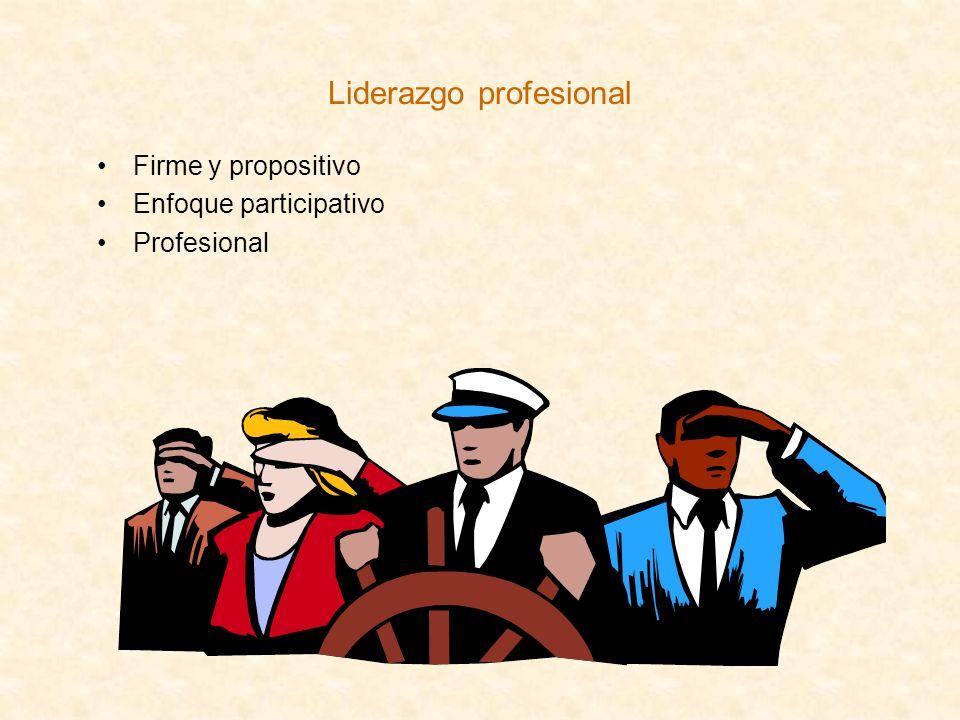Liderazgo profesional