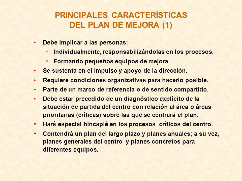PRINCIPALES CARACTERÍSTICAS DEL PLAN DE MEJORA (1)