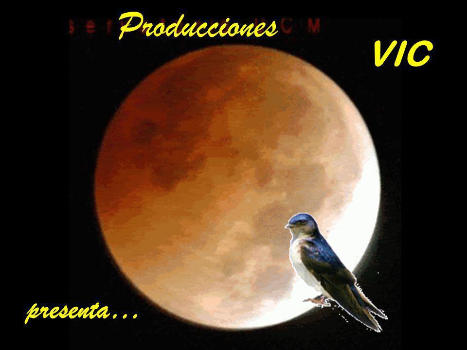 Producciones VIC presenta…