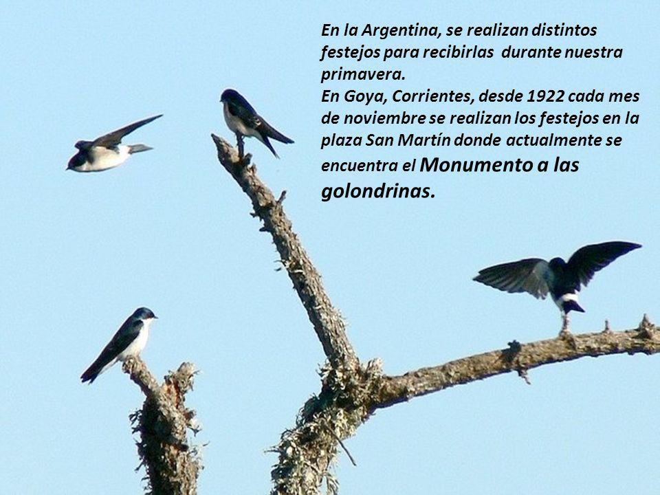 En la Argentina, se realizan distintos festejos para recibirlas durante nuestra primavera.