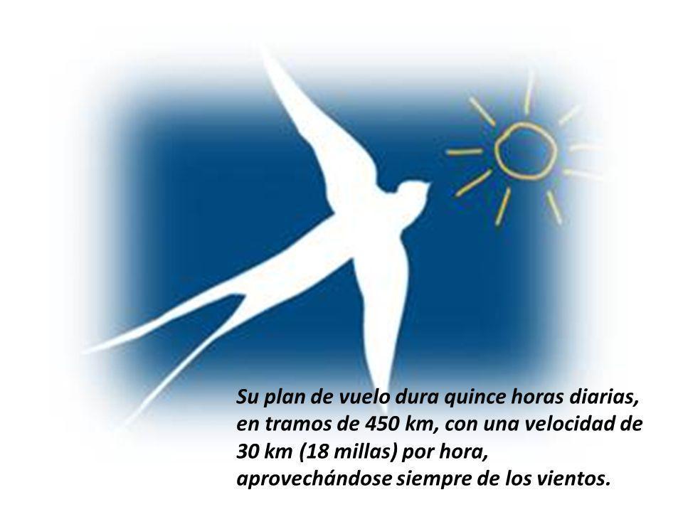 Su plan de vuelo dura quince horas diarias, en tramos de 450 km, con una velocidad de 30 km (18 millas) por hora, aprovechándose siempre de los vientos.