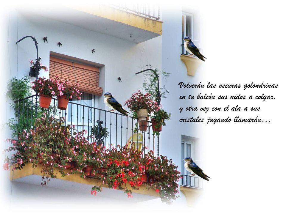 Volverán las oscuras golondrinas en tu balcón sus nidos a colgar, y otra vez con el ala a sus cristales jugando llamarán…