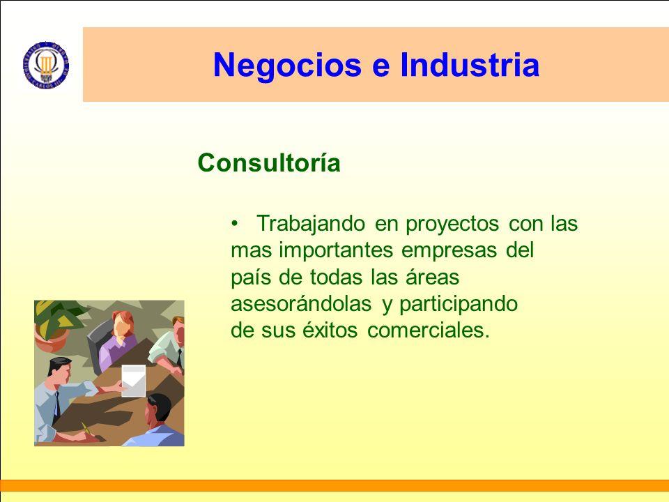 Negocios e Industria Consultoría Trabajando en proyectos con las