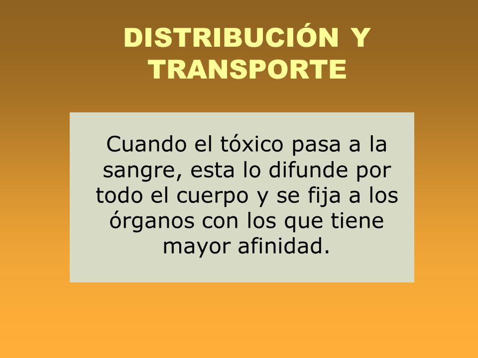 DISTRIBUCIÓN Y TRANSPORTE