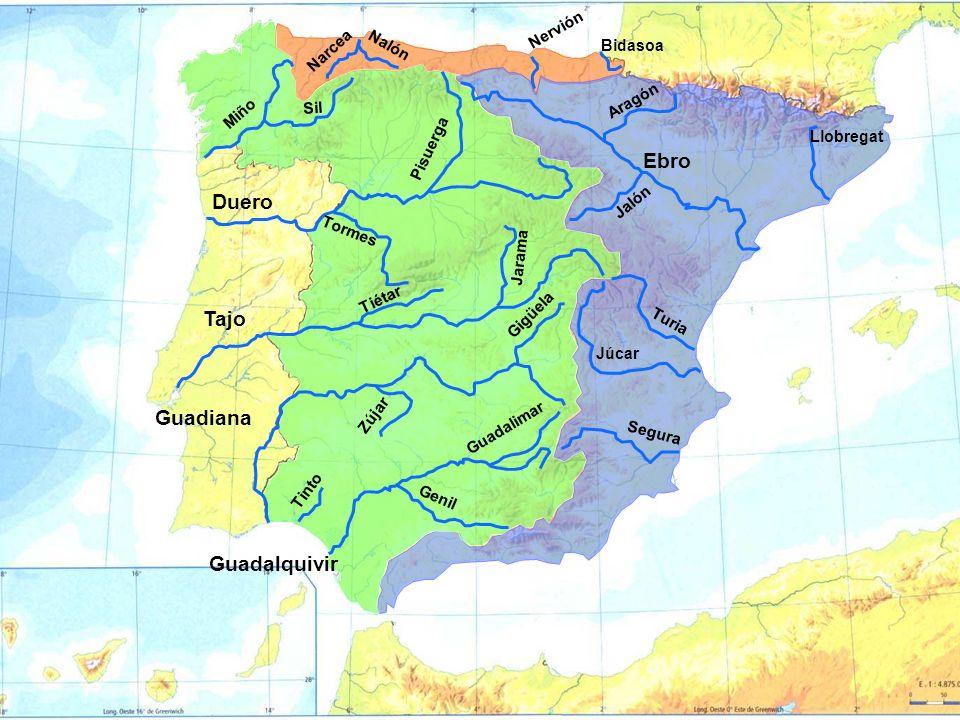 Ebro Duero Tajo Guadiana Guadalquivir Nervión Narcea Nalón Bidasoa