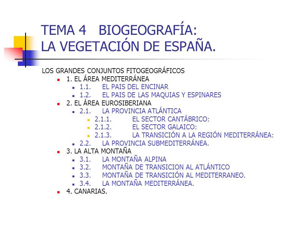TEMA 4 BIOGEOGRAFÍA: LA VEGETACIÓN DE ESPAÑA.